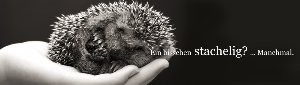 tl_files/rpf/header_igel.jpg